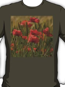 Poppies in a field. T-Shirt