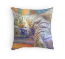 Cat nap`n Throw Pillow