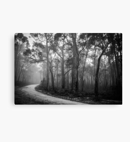 Misty Trees in Black and White Canvas Print