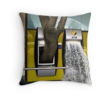 Currency Throw Pillow