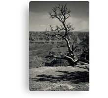 Secure I Stand Canvas Print