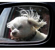 Oooh, how I love the wind and rain in my hair... Photographic Print