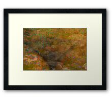 My Treasure Lies Deep  Framed Print