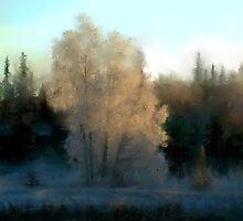Frosty Morning in Soldatna, Alaska by Francine Dufour Jones
