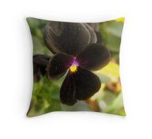 Black Velvet Throw Pillow