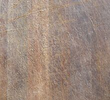 Charred Landscape by Joan Wild