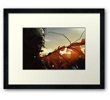 Sunset Wing Framed Print