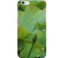 Lotus bud. iPhone Case/Skin