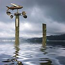 Flying Fish by Ken Wright