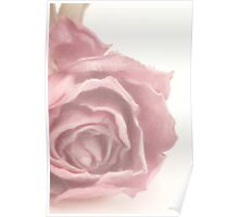 Soft Pink Dried Rose Poster