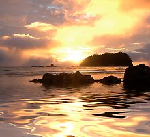 Maunganui liquid gold by Ken Wright