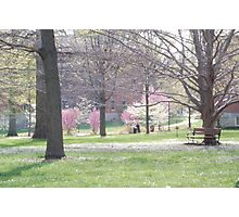 Spring in Kentucky Photographic Print