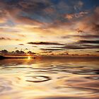 Pukerua Bay Liquid Gold by Ken Wright