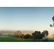 Misty Farm by Kirk  Hille