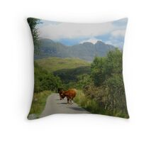 Highland Traffic Jam Throw Pillow
