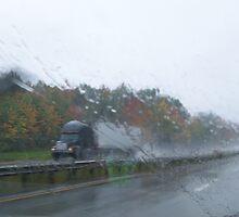 Weather Advisory by Naylor