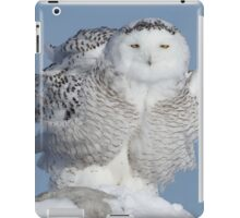Winter Coat iPad Case/Skin