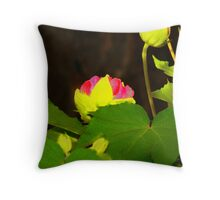 Confederate Rose Bloom 2008 Throw Pillow