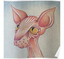 Right Side Up Sphynx Poster