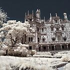 The Lords Manor by Dzian