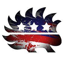 Libertarian Porcupine by CuriousMC