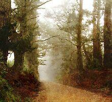 Wolfridge Road Guardians by sandman67