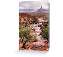 Off The Beaten Track Greeting Card