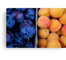 Fruit Segregation Canvas Print