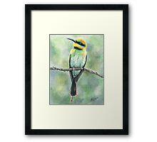 """""""Rainbow Bee Eater"""" Framed Print"""
