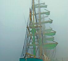 ALEXANDER von HUMBOLDT (Vessels visit Portugal serie) by Carlos Teófilo