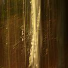 Ghost trees by brilightning