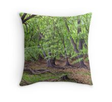 Eyeworth Wood Throw Pillow