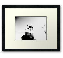Crawly Framed Print