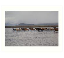 herd crossing river Art Print