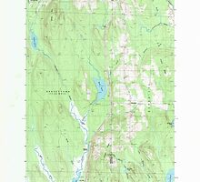 Maine USGS Historical Map Benedicta 104911 1989 24000 by wetdryvac