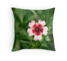 Shades of Pinks Throw Pillow