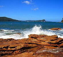 Flint & Steel Beach headland, Ku-ring-gai National Park by Spirit Level Creations