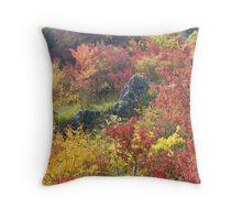 Autumn feast Throw Pillow