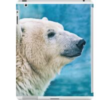 Polar bear closeup head shot iPad Case/Skin