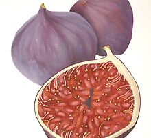 Figs String Art Painting Mixed Media Original Still Life Abstract of Botanical Fruit by cathy savels