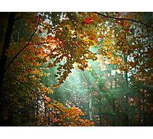 Streaks of Sunlight Photographic Print
