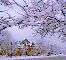 Winter in New England  by LudaNayvelt