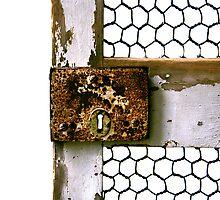 """""""Rusty Lock"""" by Bradley Shawn  Rabon"""