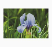 Pale Purple Iris - Impressions Of Spring Kids Clothes