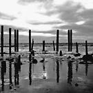 Port Willunga, Fleurieu Peninsula, SA. by ZeroesandOnes