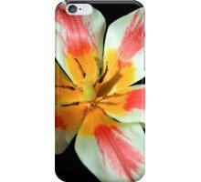 Flowering Splendor iPhone Case/Skin