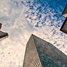 Look up...way up  by Paola Jofre