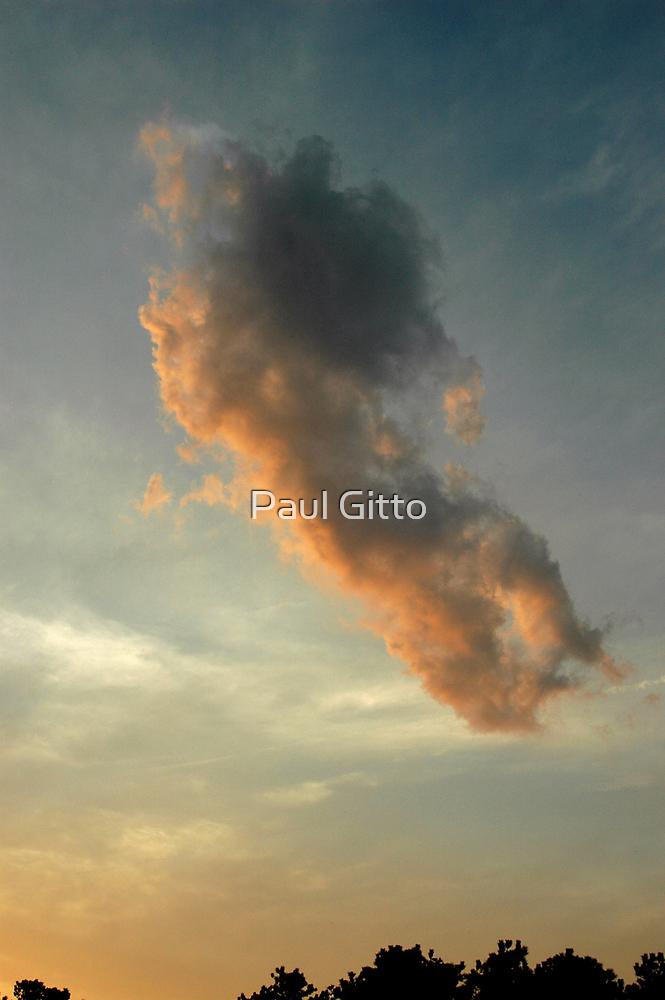 Casper above the Trees by Paul Gitto