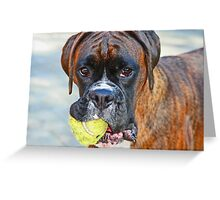 Tennis anyone??... -Boxer Dogs Series- Greeting Card
