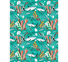 sea pattern with sharks Photographic Print